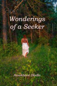 Wonderings of a Seeker by Awakhiwe Dlodlo Front Cover