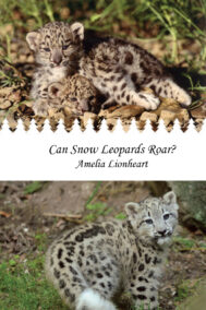 Can Snow Leopards Roar? front cover