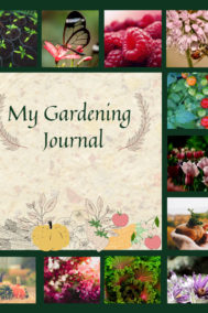 front cover of alex tayler's gardening journal