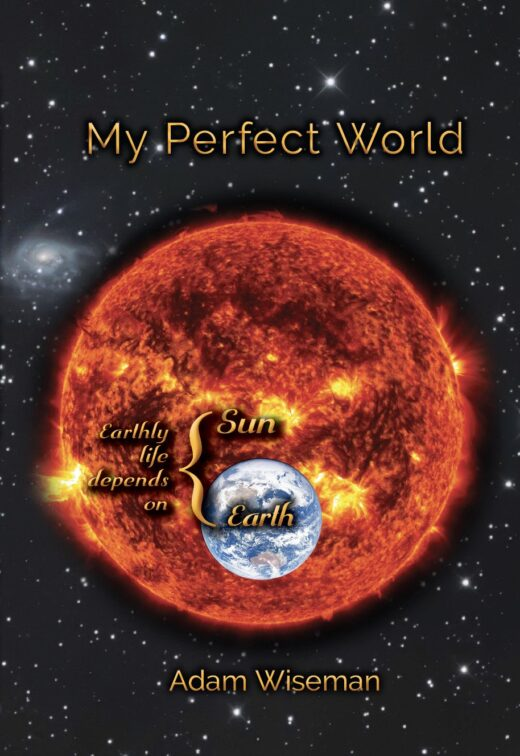 front cover of my perfect world by adam wiseman