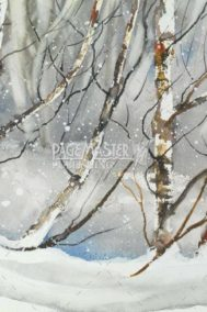 Winter Peace by Barbara Hull on PageMaster Publishing