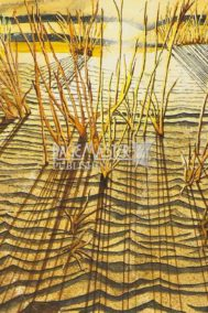 Dunes In The Sun by Brian Doran on PageMaster Publishing