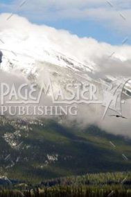 Free-Wheeling by Bruce Deacon on PageMaster Publishing
