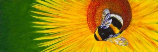 Sunny Bee by Debbie Lemoine on PageMaster Publishing