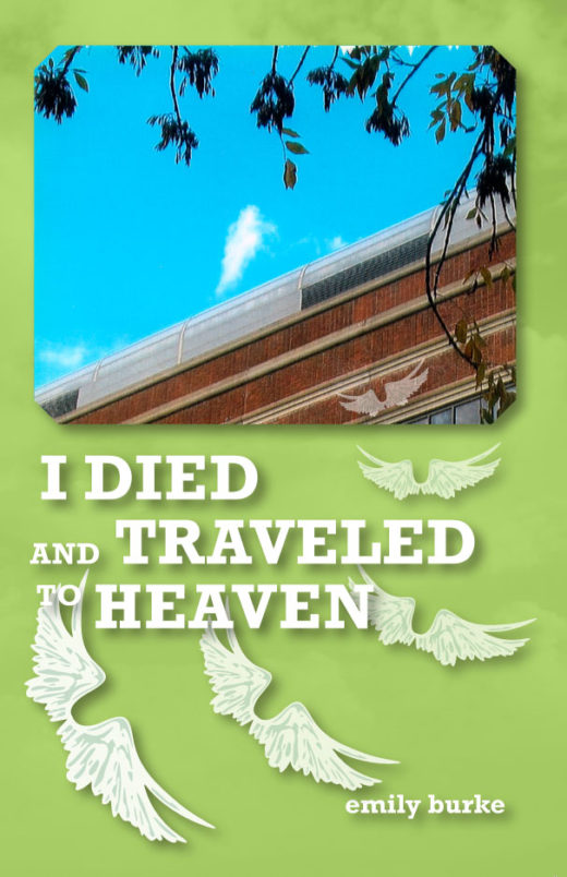 I Died and Traveled to Heaven by Emily Burke Front Cover