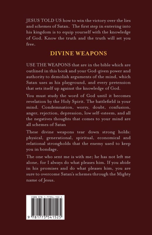 Divine Weapons by Evelyn Morris Back Cover