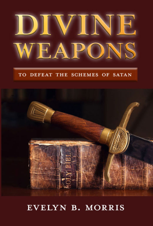 Divine Weapons by Evelyn Morris