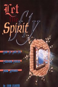 front cover of let the spirit fly by john kloster