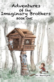 front cover of adventure of the imaginary brothers