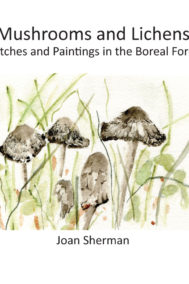 Mushrooms and Lichens by Joan Sherman Front Cover