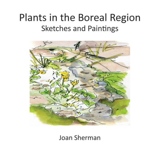 Plants in the Boreal Region by Joan Sherman Front Cover