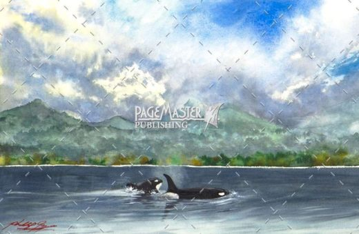 West Coast Orcas by Phil Gagnon on PageMaster Publishing