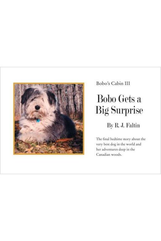 Bobo Gets a Big Surprise by R.J. Faltin