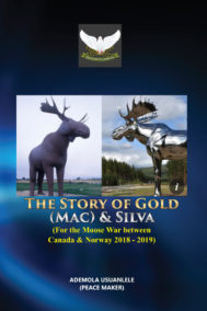 The Story of Gold (Mac) & Silva by Ademola Usuanlele Front Cover