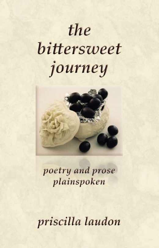 The back cover of the bittersweet journey