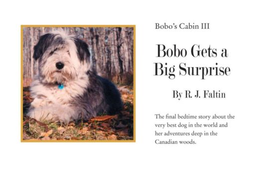 Bobo Gets a Big Surprise by R.J. Faltin
