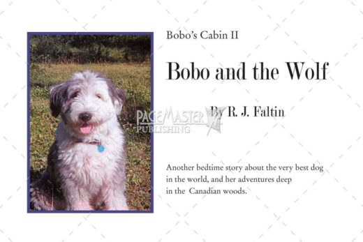 Bobo and the Wolf by R.J. Faltin